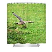 Kestrel Landing Shower Curtain