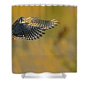 Kestrel Takes Flight Shower Curtain