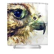 Kestrel Watercolor Painting Shower Curtain