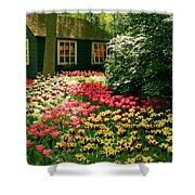 Keukenhof's Tulips Shower Curtain