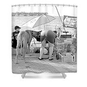 Key West Dane Shower Curtain