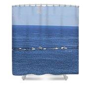 Key West Fishing Shower Curtain