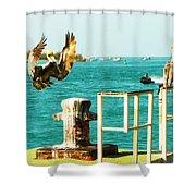 Key West Landing Shower Curtain