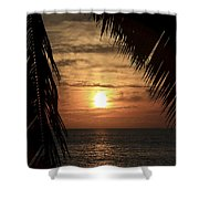 Key West Palm Sunset 2 Shower Curtain