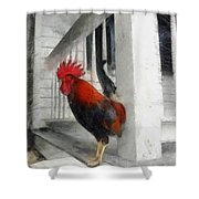 Key West Porch Rooster Shower Curtain by Michelle Calkins