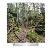 Keyhole Side Trail Shower Curtain