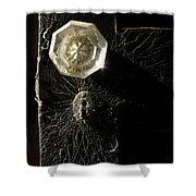 Keyholes And Cobwebs Shower Curtain