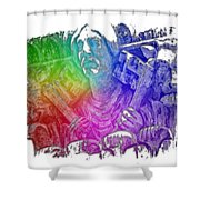 Keys To The City Cool Rainbow 3 Dimensional Shower Curtain