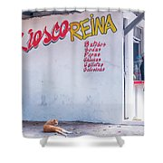 Kiesco Reina Shower Curtain