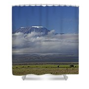 Kilimanjaro With Elephants Shower Curtain