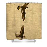 Killdeer Over The Pond Shower Curtain