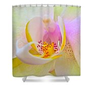 Killing Me Softly Shower Curtain