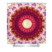 Kindness Mandala Art By Sharon Cummings Shower Curtain
