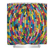 Kinetic Energy Shower Curtain