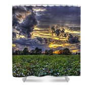 King Cotton Sunset Art Statesboro Georgia Shower Curtain