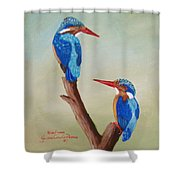 King Fishers Shower Curtain