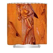 King Gaspar Shower Curtain