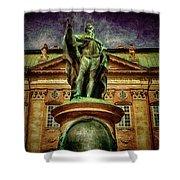 King Gustav  Shower Curtain