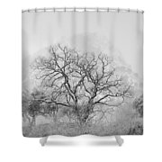 King Mountain Monochrome Shower Curtain