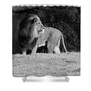 King Of Beasts Black And White Shower Curtain