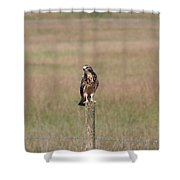 King Of His Domain. Shower Curtain