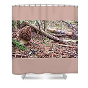 King Of The Forest Shower Curtain