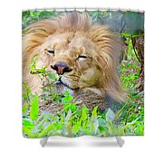 King Of The Jungle  Shower Curtain