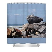King Of The Rocks Shower Curtain