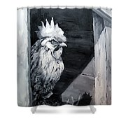 King Of The Roost Shower Curtain by Diane Kraudelt