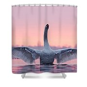 King Of The Water And The Sunset  Shower Curtain