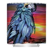 King Parrot 01 Shower Curtain