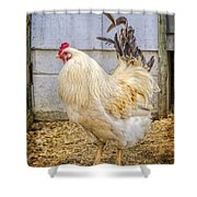 King Rooseter Shower Curtain