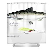 King Salmon Or Chinook With Chinook Candy Fly Shower Curtain