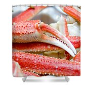 King Snow Crab Legs Ready To Eat Closeup Shower Curtain by Alex Grichenko
