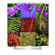 Kingdom Plantae Shower Curtain