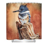Kingfisher I Shower Curtain