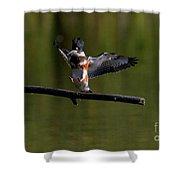 Kingfisher Landing Shower Curtain