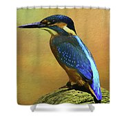 Kingfisher Perch Shower Curtain