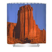 612706-kingfisher Tower  Shower Curtain