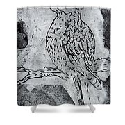 Kingfisher White On Black Shower Curtain