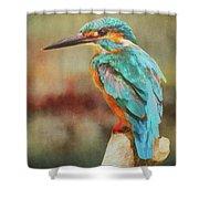 Kingfisher's Perch Shower Curtain
