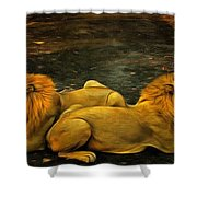 Kings Of The Road Shower Curtain