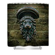 King's Passage Shower Curtain
