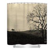 Kintyre  Plus Nine Shower Curtain