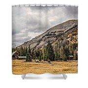 Kirwin 1 Shower Curtain