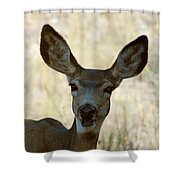 Kiss Me Shower Curtain