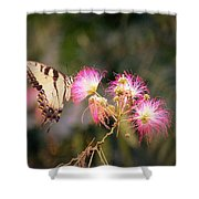 Kiss Of Butterfly Shower Curtain