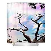 Kiss Of Spring Hues Shower Curtain