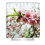 Kiss Of Spring Shower Curtain