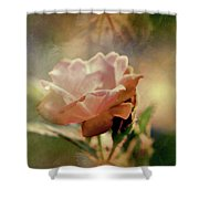 Kissed By A Rose Shower Curtain